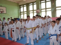 The tournament was held in Chita city ,Amur Russia on 12 May 2013,