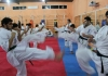 The 2nd IKO MATSUSHIMA U.A.E.Kyokushin Karate Camp will be held from 29th Nov.to 1st Dec.2013
