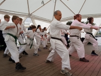 """On the 4th of February, Karate Syd of the Swedish I.K.O. Matsushima branch conducted a public demonstration in downtown Lund to display the power of Sosai Oyama's karate."
