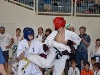 I.K.O. Matsushima Cup was held in Maalot,Israel on 12th May 2017