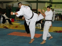 Brazilian IKO Matsushima  Kyokushin Karate Tournament 2017 was held in Navirai Brazil on 12th~13th August 2017