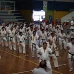 South American seminar web_6