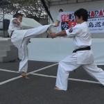2012沼田演武会 010
