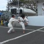 2012沼田演武会 009