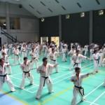 Indonesia seminar10
