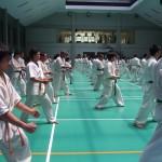Indonesia seminar7