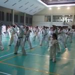 Indonesia seminar9