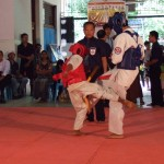 Myanmar Champ 13
