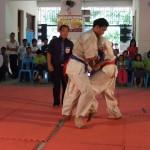 Myanmar Champ 15