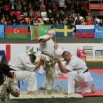 European Champ 2013 20