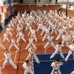European Seminar 2013_5