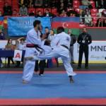 Europian Champ 2013 12