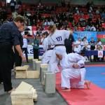 Europian Champ 2013 19