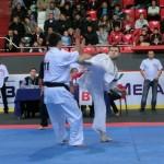 Europian Champ 2013 21