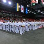 Europian Champ 2013 3