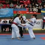 Europian Champ 2013 31