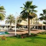 UAE Dianati November 2013 5