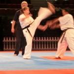 Kumite Female 6 (640x480)