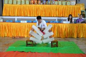 Myanmar Myint July 2015 11