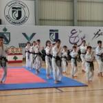 Champ Lebanon 17