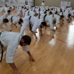 Seminar Lebanon 17