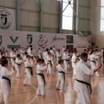 Seminar Lebanon 8