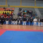 Chile Segovia June 2018 1