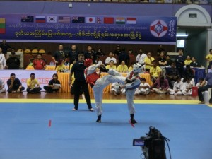 Asian Pacific Kumite (13) (800x600)