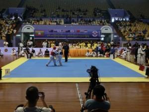 Asian Pacific Kumite (14) (800x600)