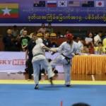 Asian Pacific Kumite (16) (800x600)