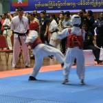 Asian Pacific Kumite (4) (800x600)