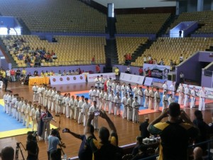 Asian Pacific Opening ceremony (8) (800x600)