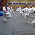 Asian pacific Seminar (1) (450x800)