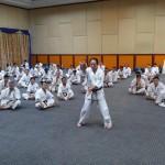 Asian pacific Seminar (9) (450x800)