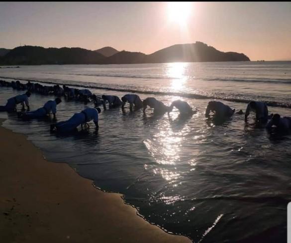 Brazil Nagata February 2020 26