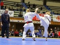 第5回I.K.O.MATSUSHIMA オープントーナメント全世界ウエイト制女子極真空手道選手権大会女子組手の部