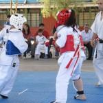 Chile Toredo November 2011 Tournament 5