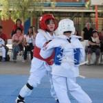 Chile Toredo November 2011Tournament 6