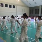 Indonesia seminar8