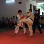 Myanmar Champ 17