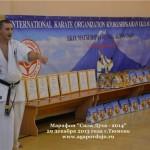 Russia Agapov January 2014 1