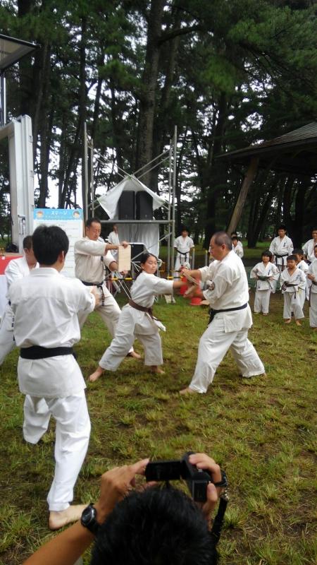 Holiday in Maebashi 1 (450x800)
