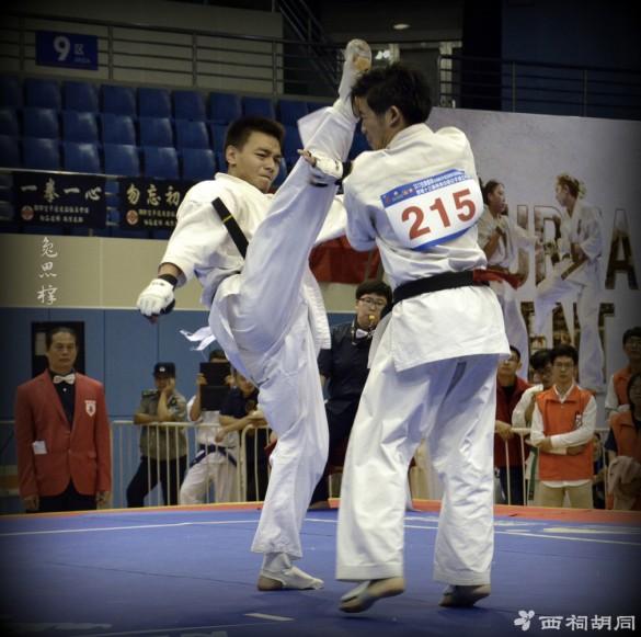 China Zhao November 2017 1
