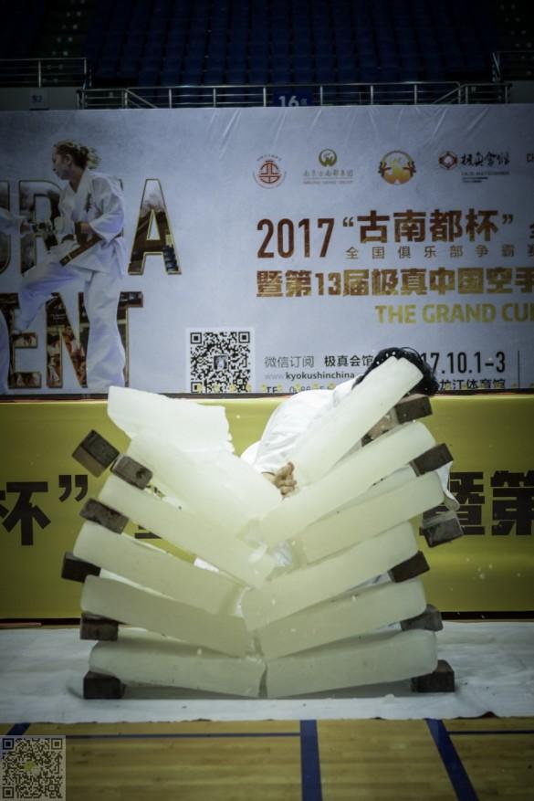 China Zhao November 2017 7