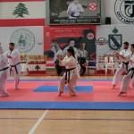 Champ Lebanon 16