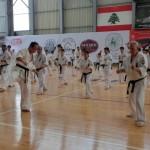 Seminar Lebanon 18