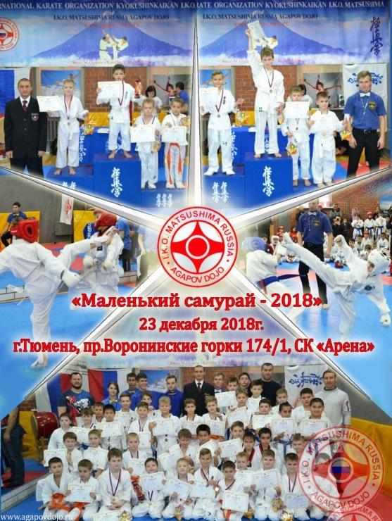 Russia Agapov January 2019 1