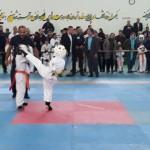 Iran Ghasemi February 2019 3