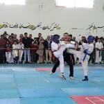 Iran Ghasemi February 2019 4