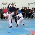 Iran Ghasemi February 2019 7